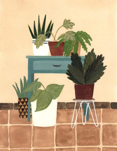 plantscorner